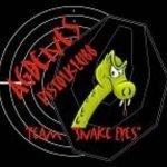 Agdenes pistolklubb